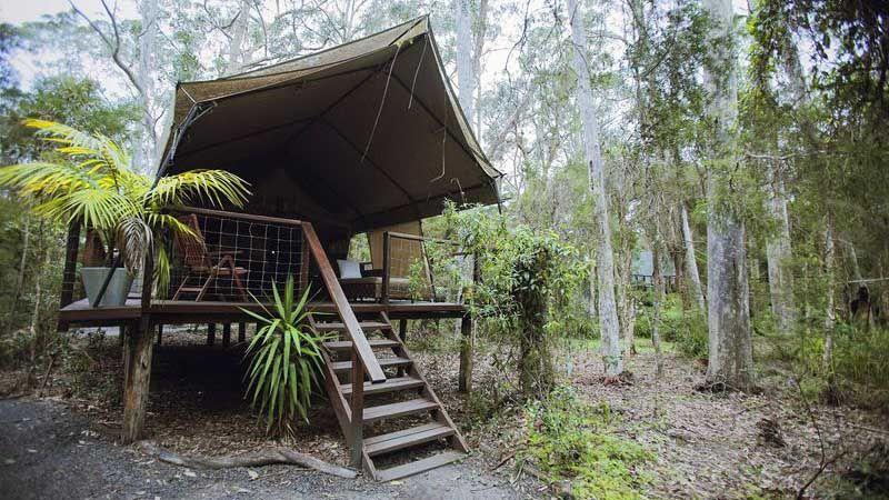Paperbark Camp.
