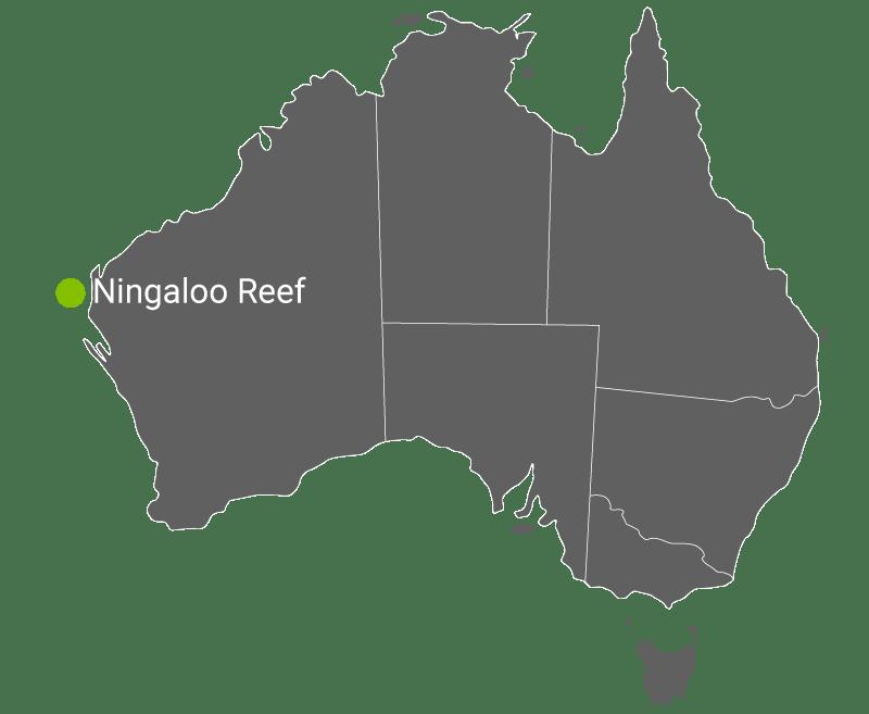 Kart Ningaloo Reef