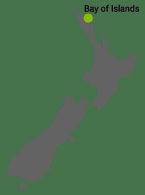Kart Bay of Islands