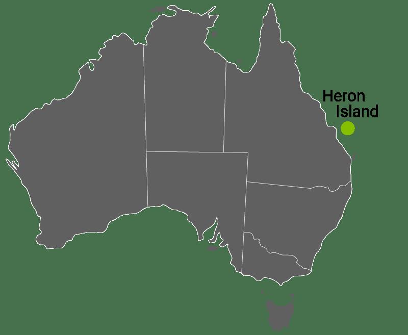 Kart Heron Island