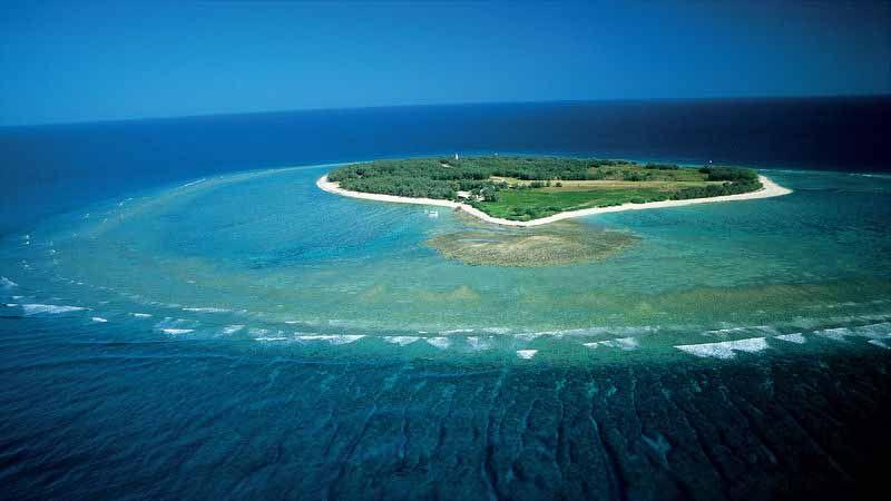 Lady Elliot Island.