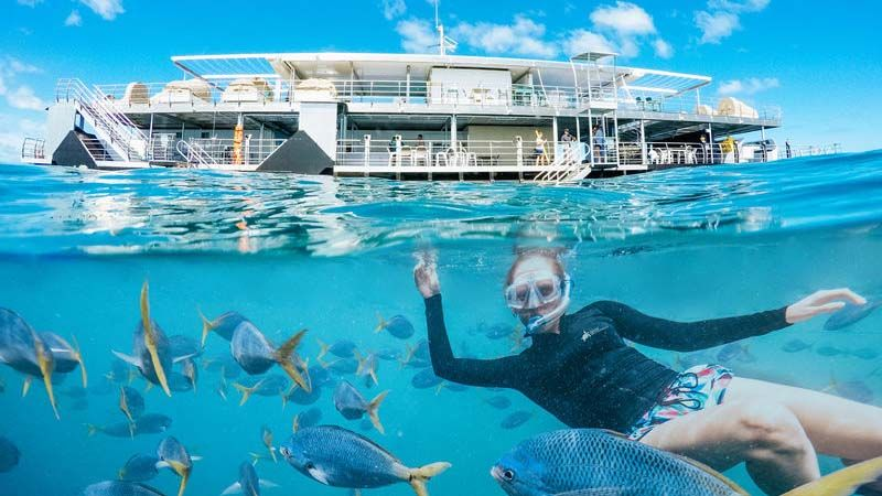ReedSleep på ReefWorld.