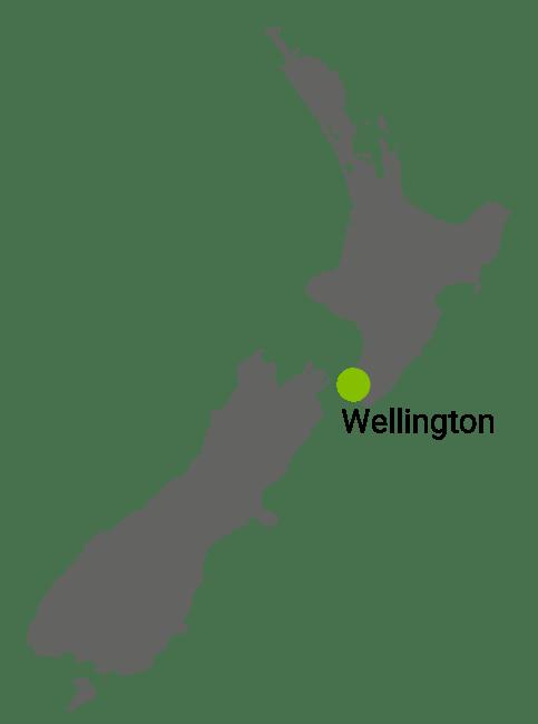 Kart Wellington
