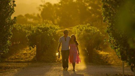 Australias beste vinregioner