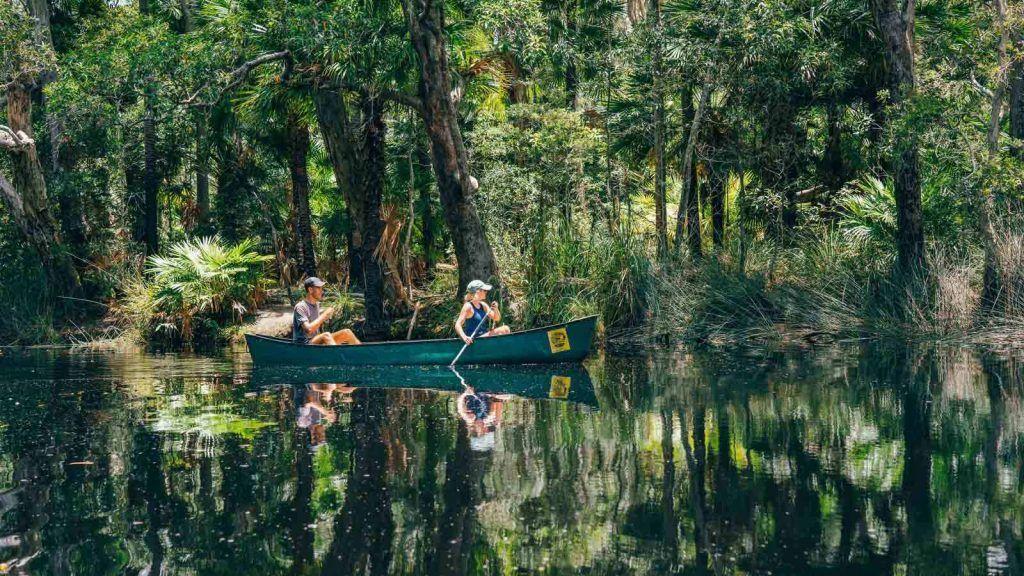 Noosa Everglades.