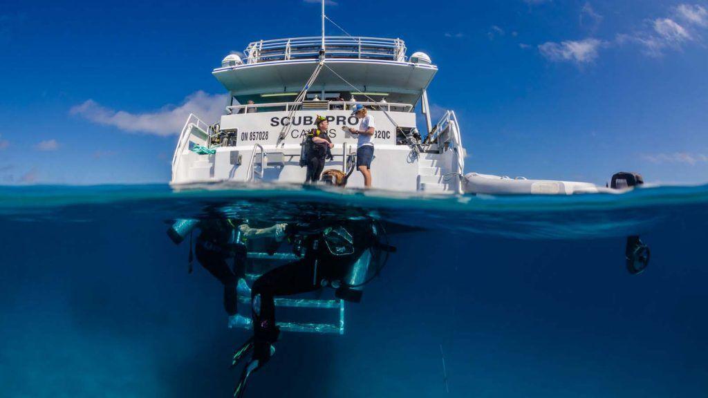 Pro Dive Cairns.